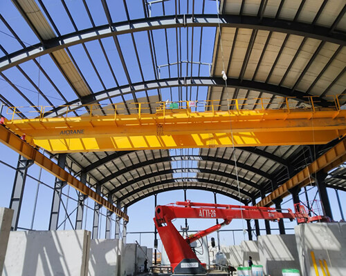 Double Girder Crane with hook for Sale